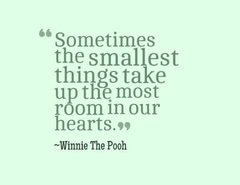 Sometimes the smallest things take up the biggest place in our hearts.